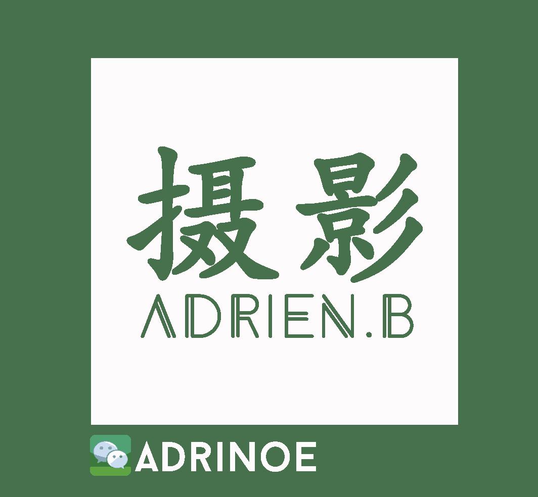 adrienbecuwe.com