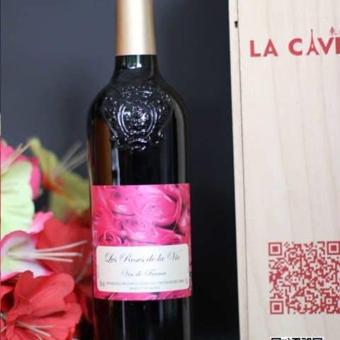 La Cave – Wine – Chengdu – Les rêves de la vie