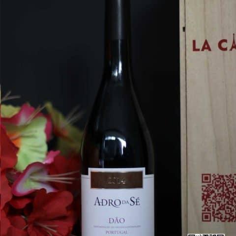 La Cave – Wine – Chengdu – AdroDaSe