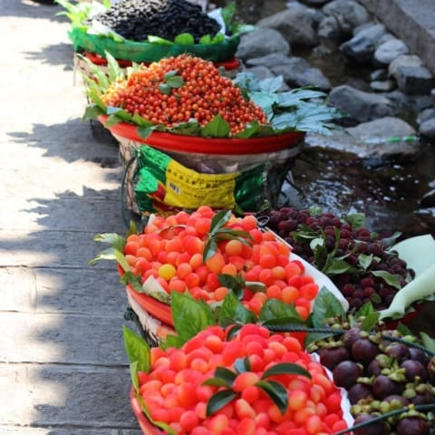 dali-fruits-street-travel-yunnan-480x480 Home