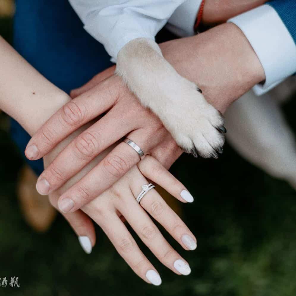 wedding-dog-cute-ring-chengdu #wedding #dog #cute #ring #chengdu