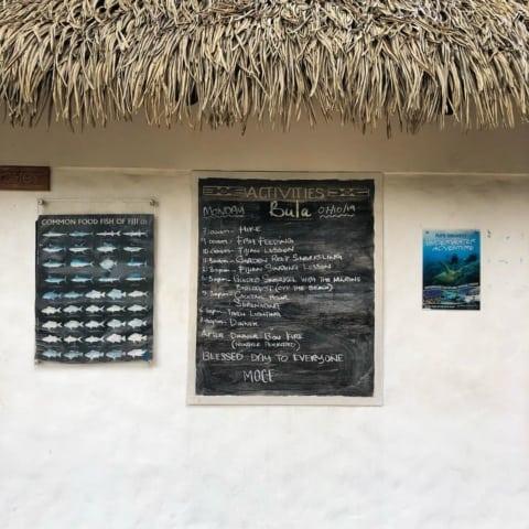 hello-bula-monday-snokeling-tropicaislandresort-480x480 Home