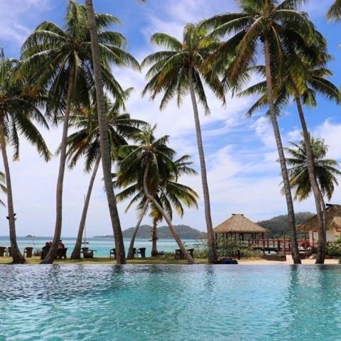 pool-view-tropicaislandresort-fiji-coconuttreesf09f8cb4-480x480 Home