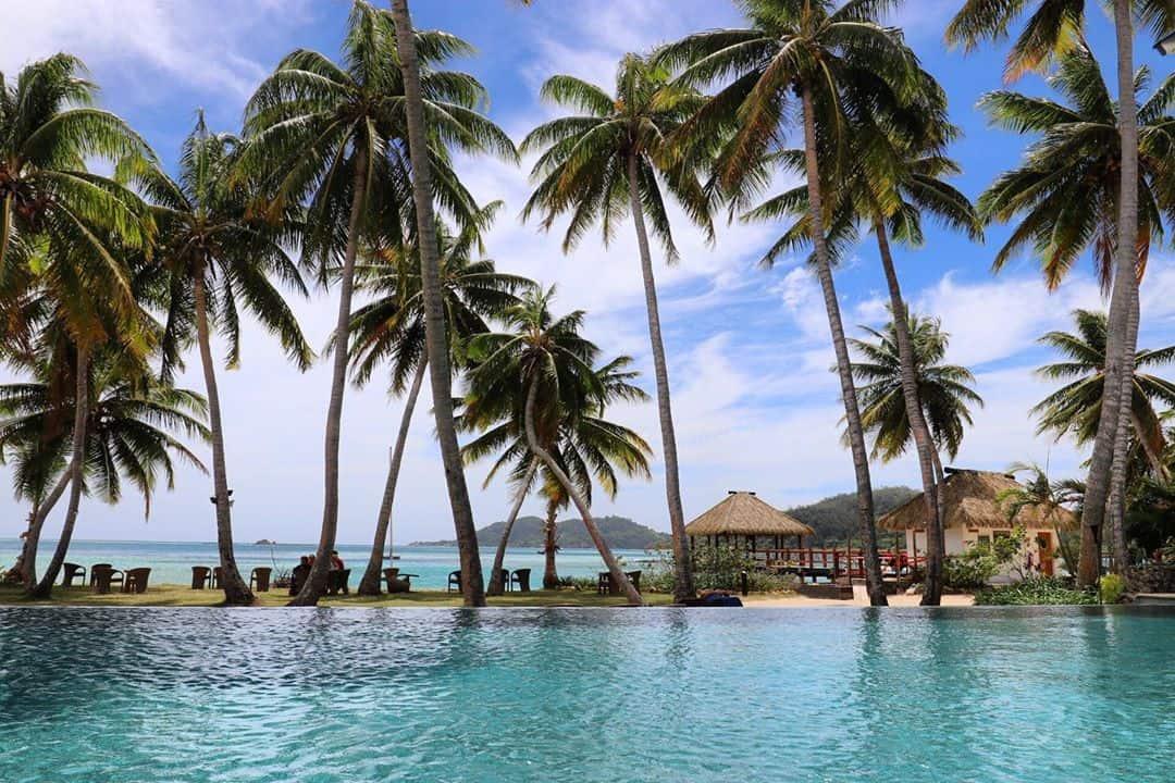pool-view-tropicaislandresort-fiji-coconuttreesf09f8cb4 #pool #view #tropicaislandresort #fiji #coconuttrees🌴