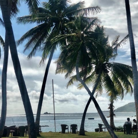 relax-view-ocean-coconuttreesf09f8cb4tropicaislandresort-travel-480x480 Home